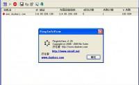 PingInfoView v1.25中文汉化绿色版-小巧的批量 Ping 工具